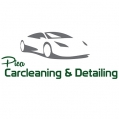 Pica Carcleaning & Detailing