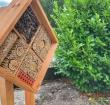Nieuw hotel in Alphen richt zich niet op toeristen, maar op bijen