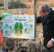 Leerlingen planten bomen in eerste Tiny Forest