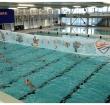 Alphense Zwemclub (AZC) houdt Open Dag op 27 mei