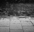 GroenLinks: Waterbesparing Alphen hard nodig