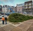 Kerstboom op het Thorbeckeplein omgevallen