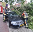 Stormschade in Alphen tijdens krachtige herfststorm