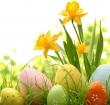 Paas(s)hoppen bij De Baronie op 31 maart