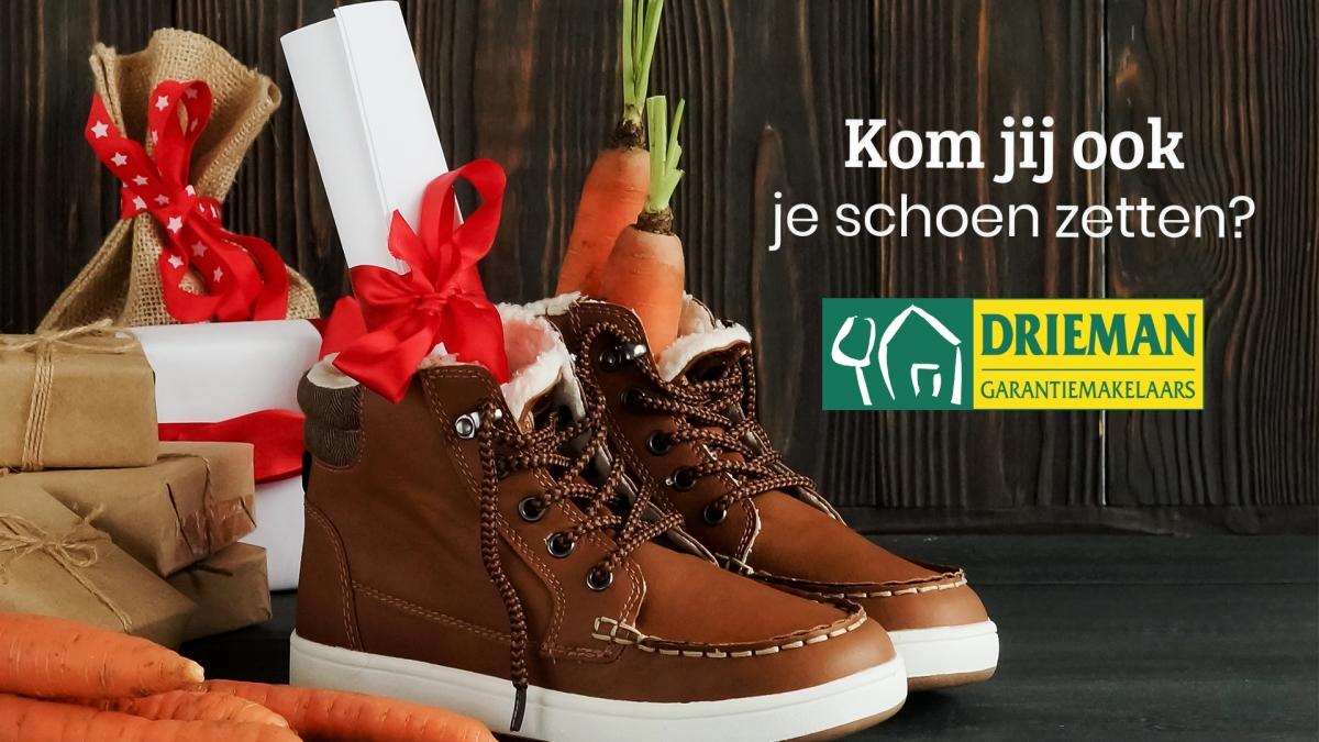 Zet je schoen bij Drieman Garantiemakelaars!
