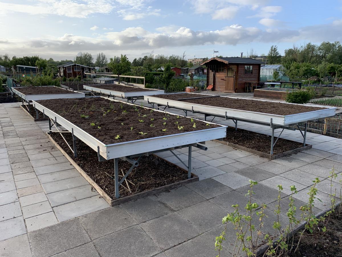 Tuinvereniging Spoorzicht presenteert Aangepast Tuinieren