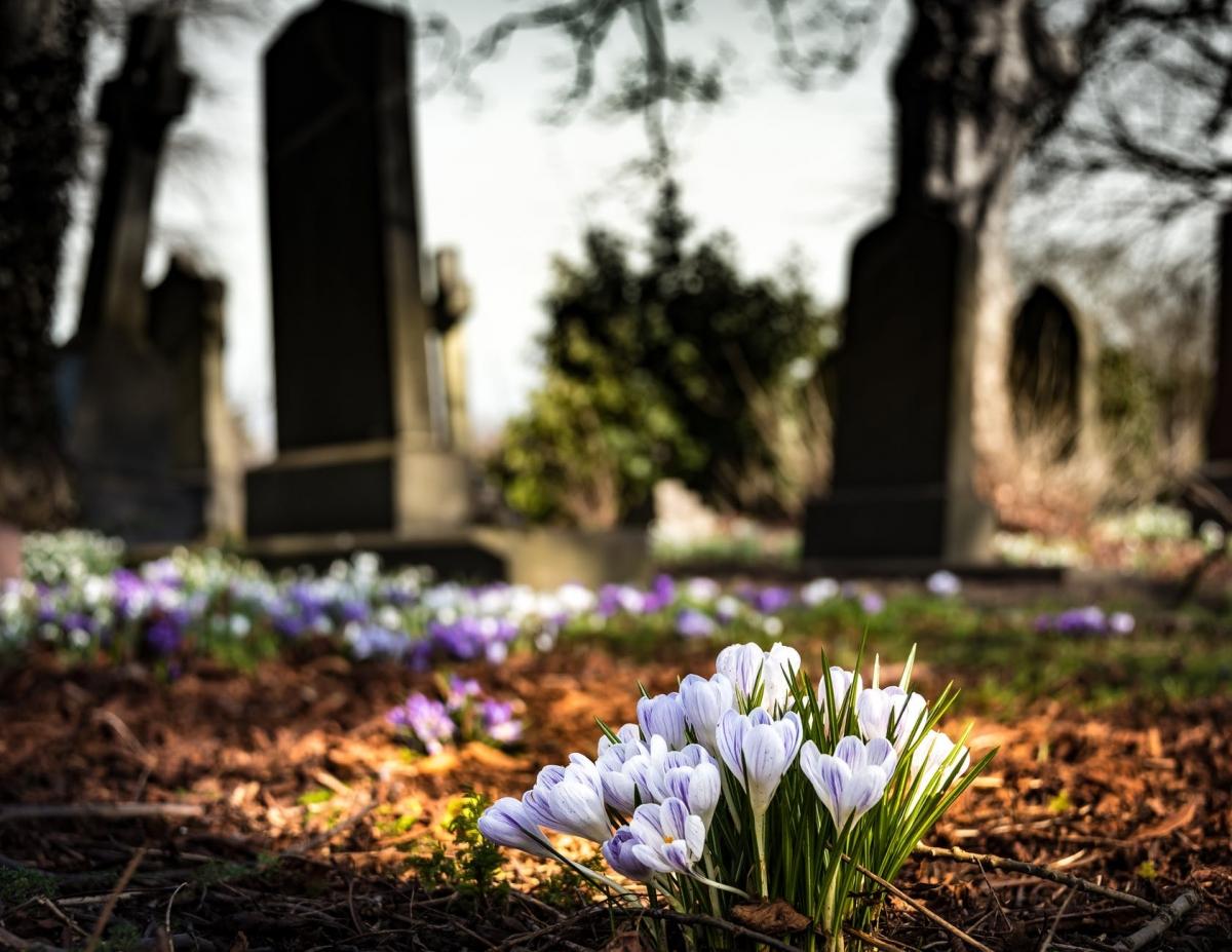 Alle Alphense begraafplaatsen nu online te vinden